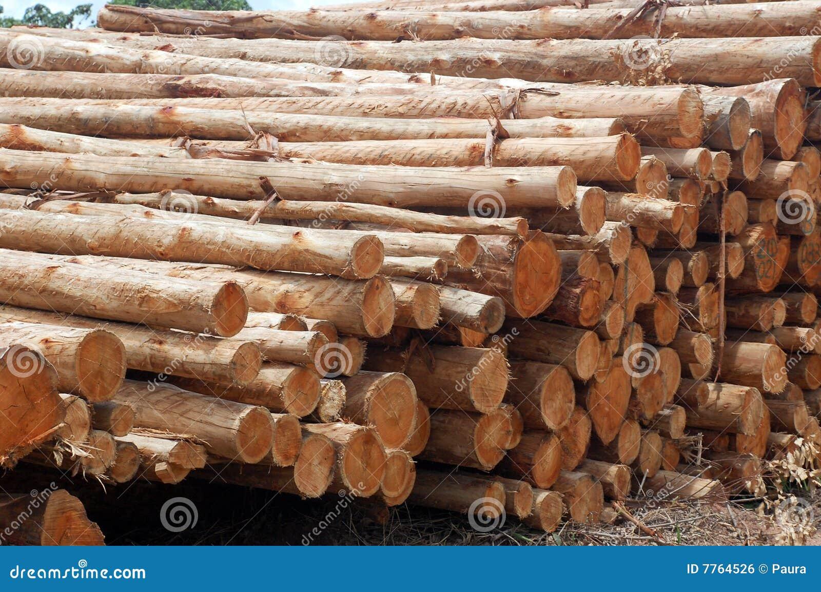 Wood Pile Royalty Free Stock Image Image 7764526