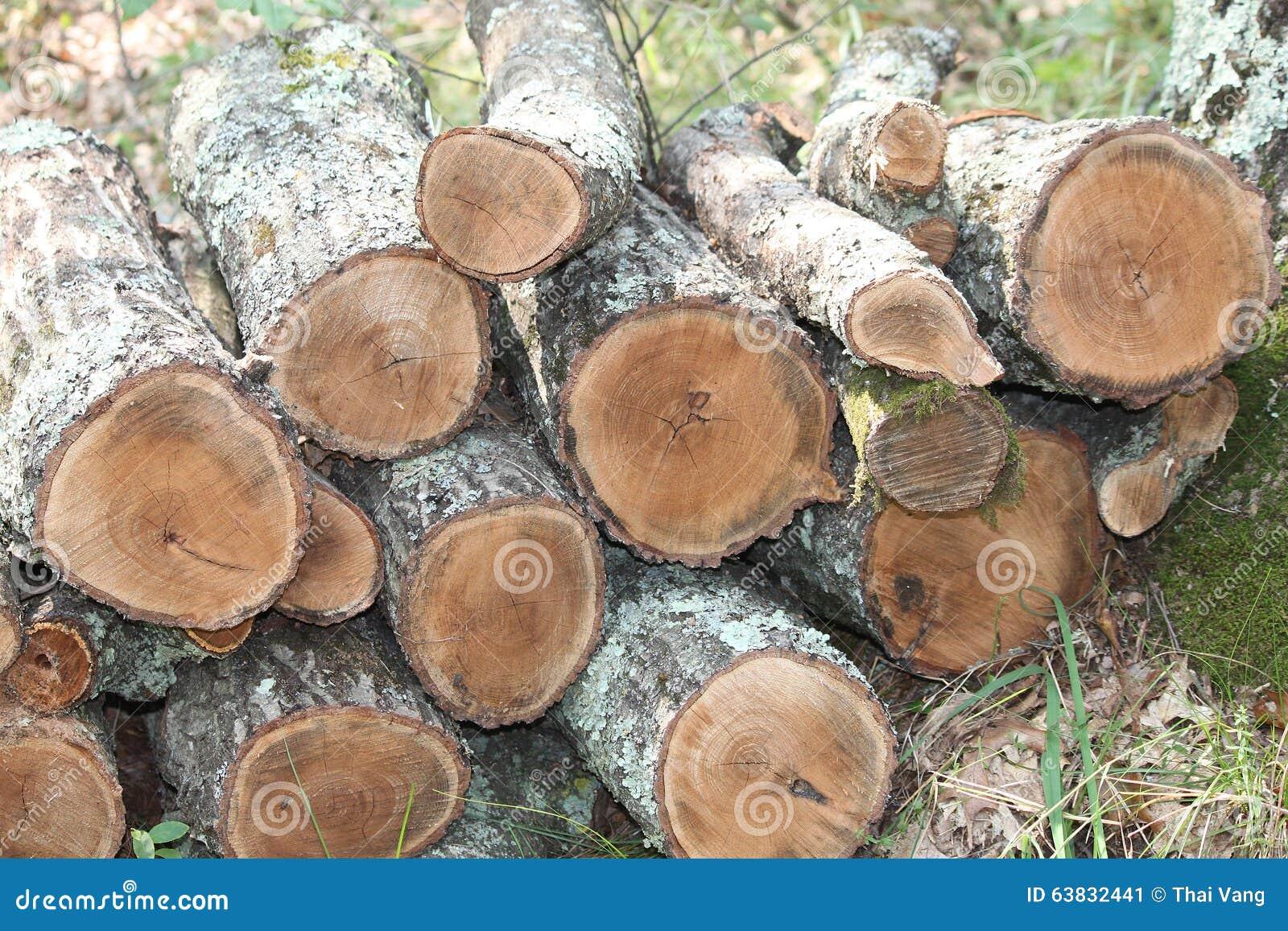 Wood Pile Stock Illustration Image 63832441