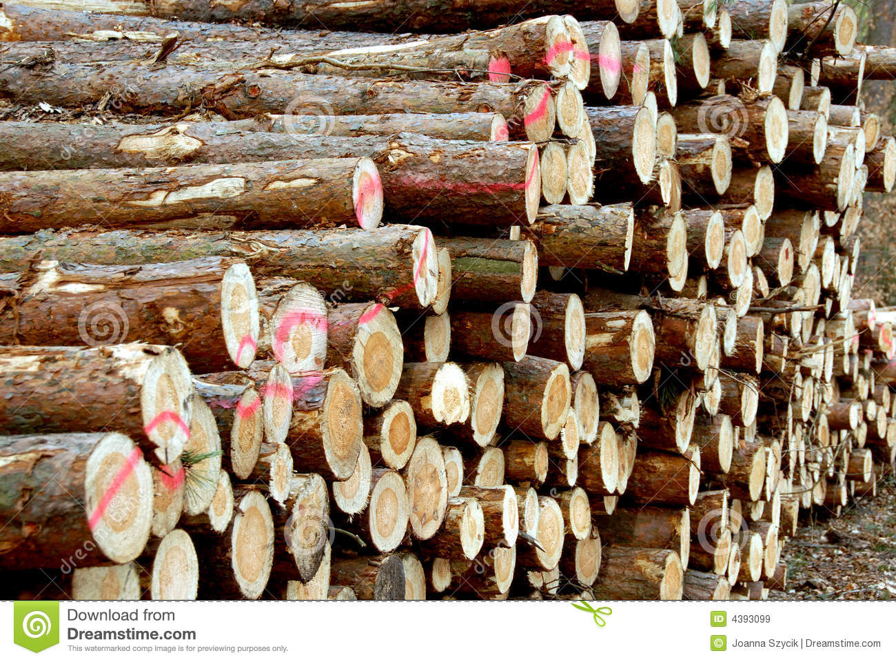 Wood piles stock image of lumber trunk