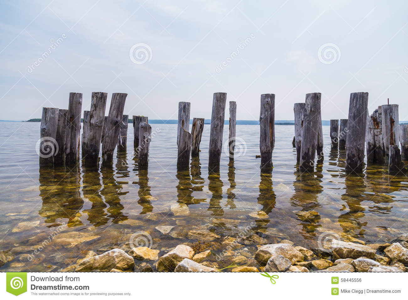 Wood Posts In The Water Stock Photo Image Of Canada