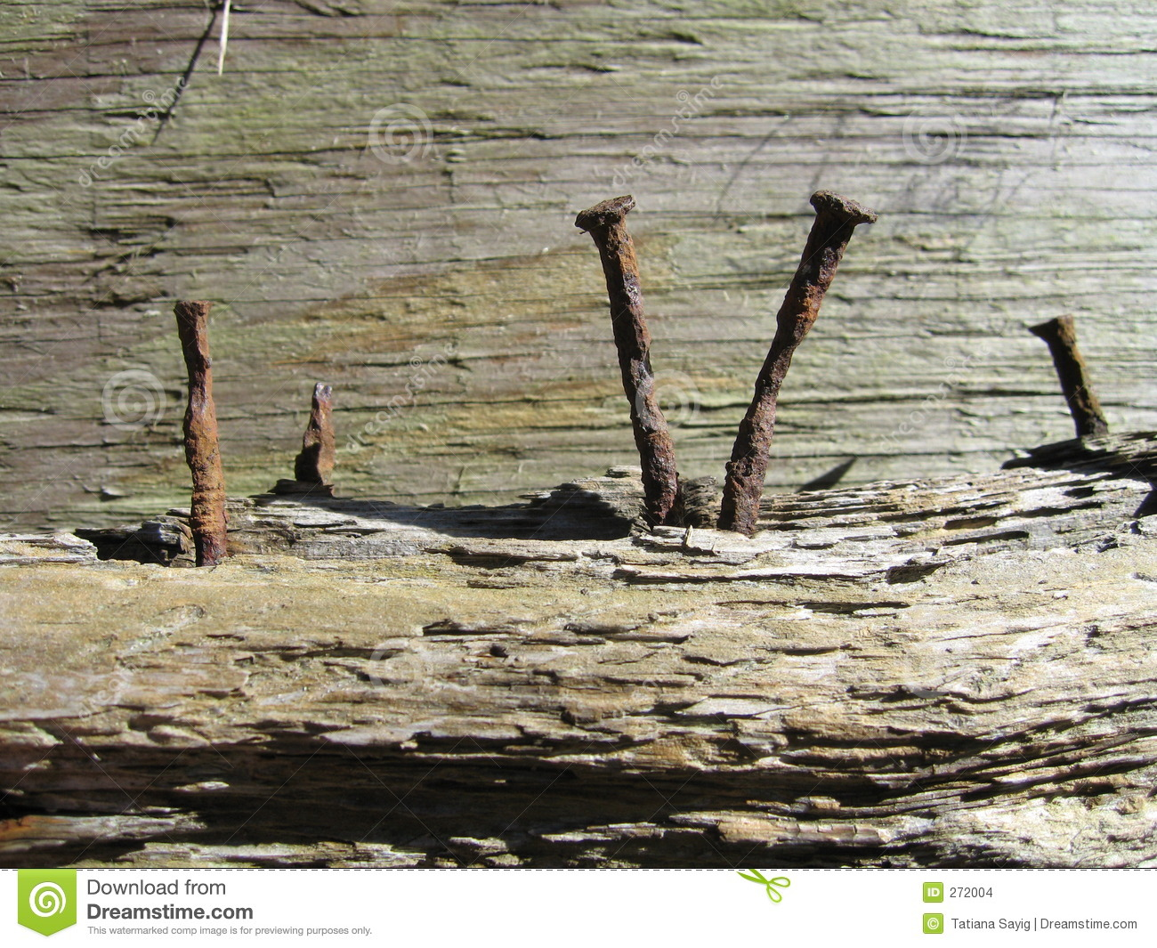 Wood and Rusty nails stock photo. Image of four, broke ...