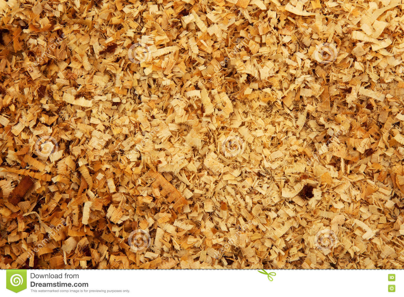 Dirty Wood Chips ~ Wood shavings sawdust royalty free stock photo