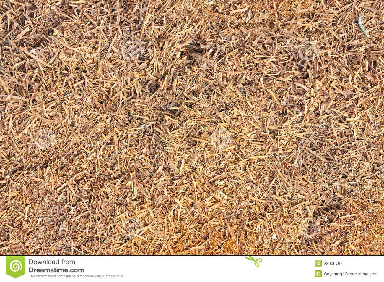 wood shavings texture stock photography image 23900792. Black Bedroom Furniture Sets. Home Design Ideas