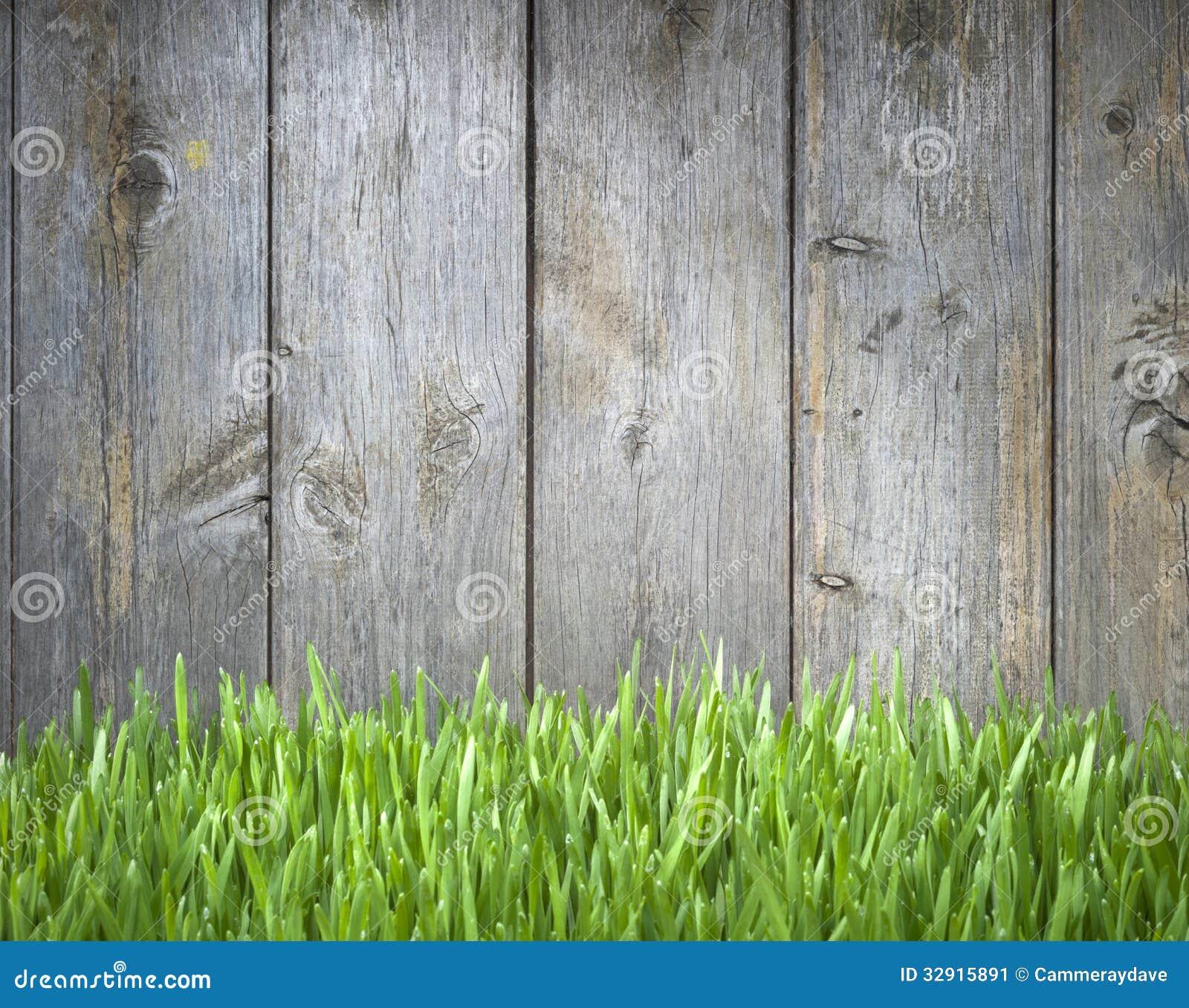 Wood staket Background för gräs