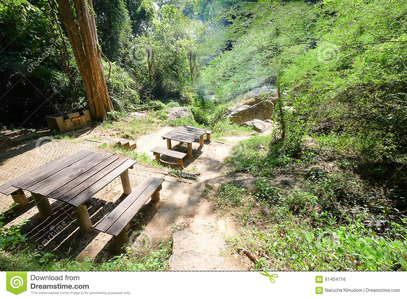 The Wood Table And Bench In The Forest Stock Photo Image