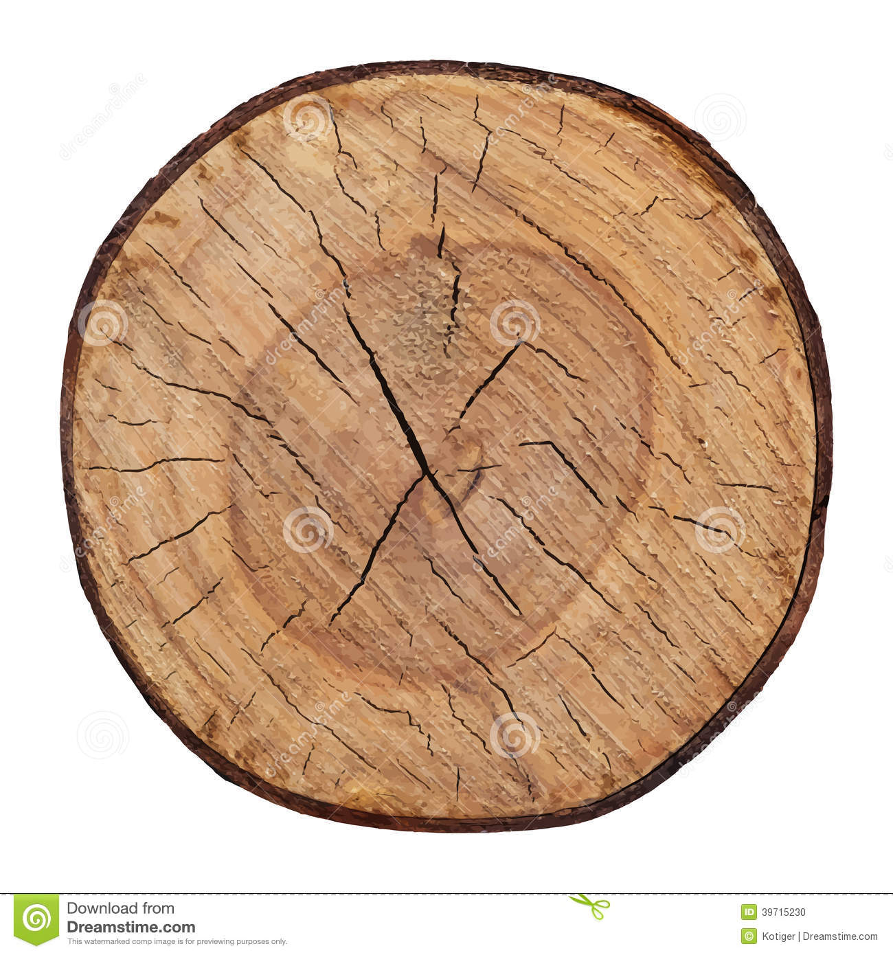 wood texture of cutted tree trunk vector stock illustration
