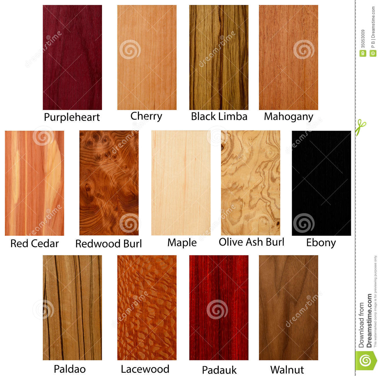 Wood Textures Stock Image Image Of Ebony Hardwood Tree