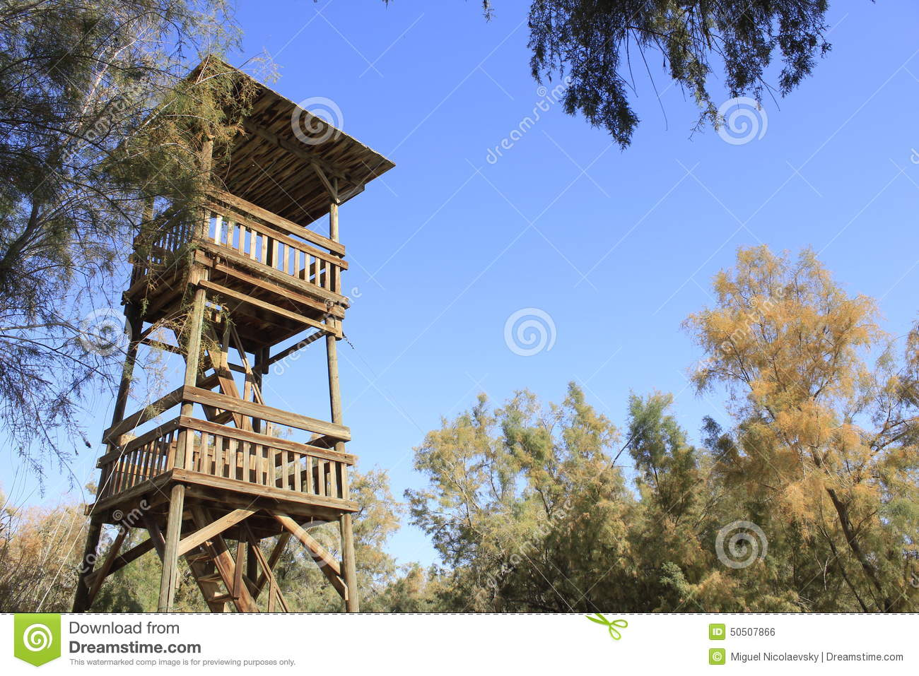 wood tower at ein fashkha einot tzukim natural reserve oasis in the