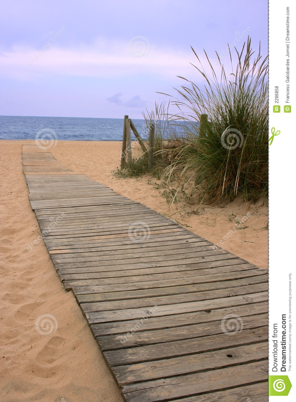 Wood Walkway To The Ocean Stock Photo Image Of Landscape