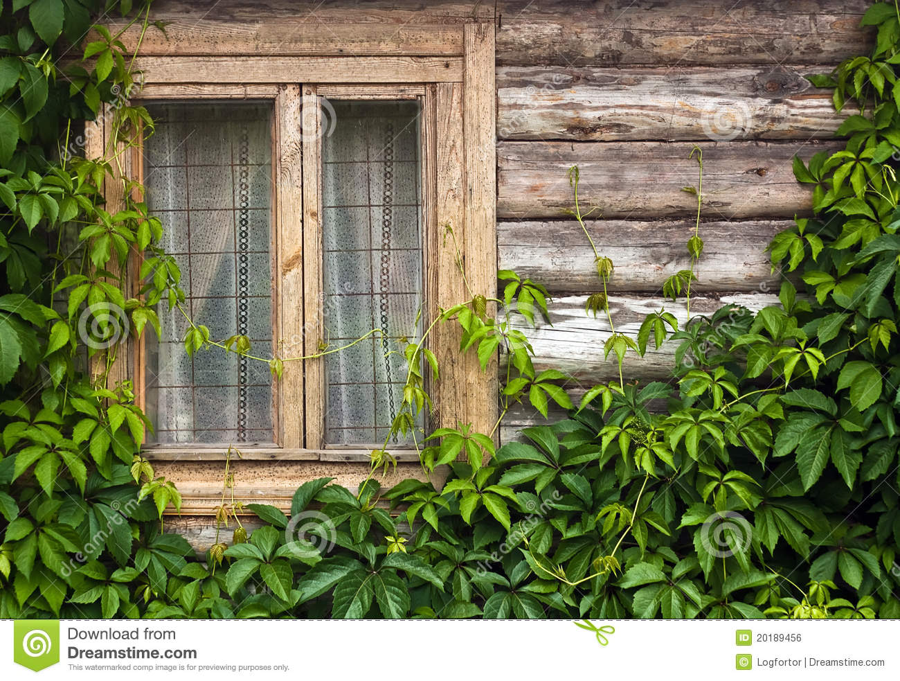 Wood Wall With Plants And Window Royalty Free Stock Image