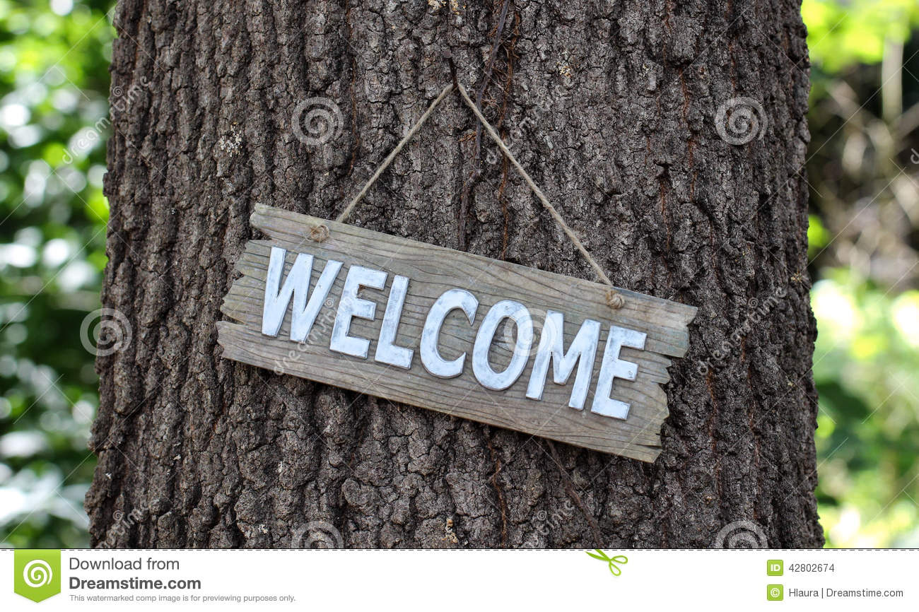 Wood Welcome Sign Hanging On Tree In Forest Stock Photo