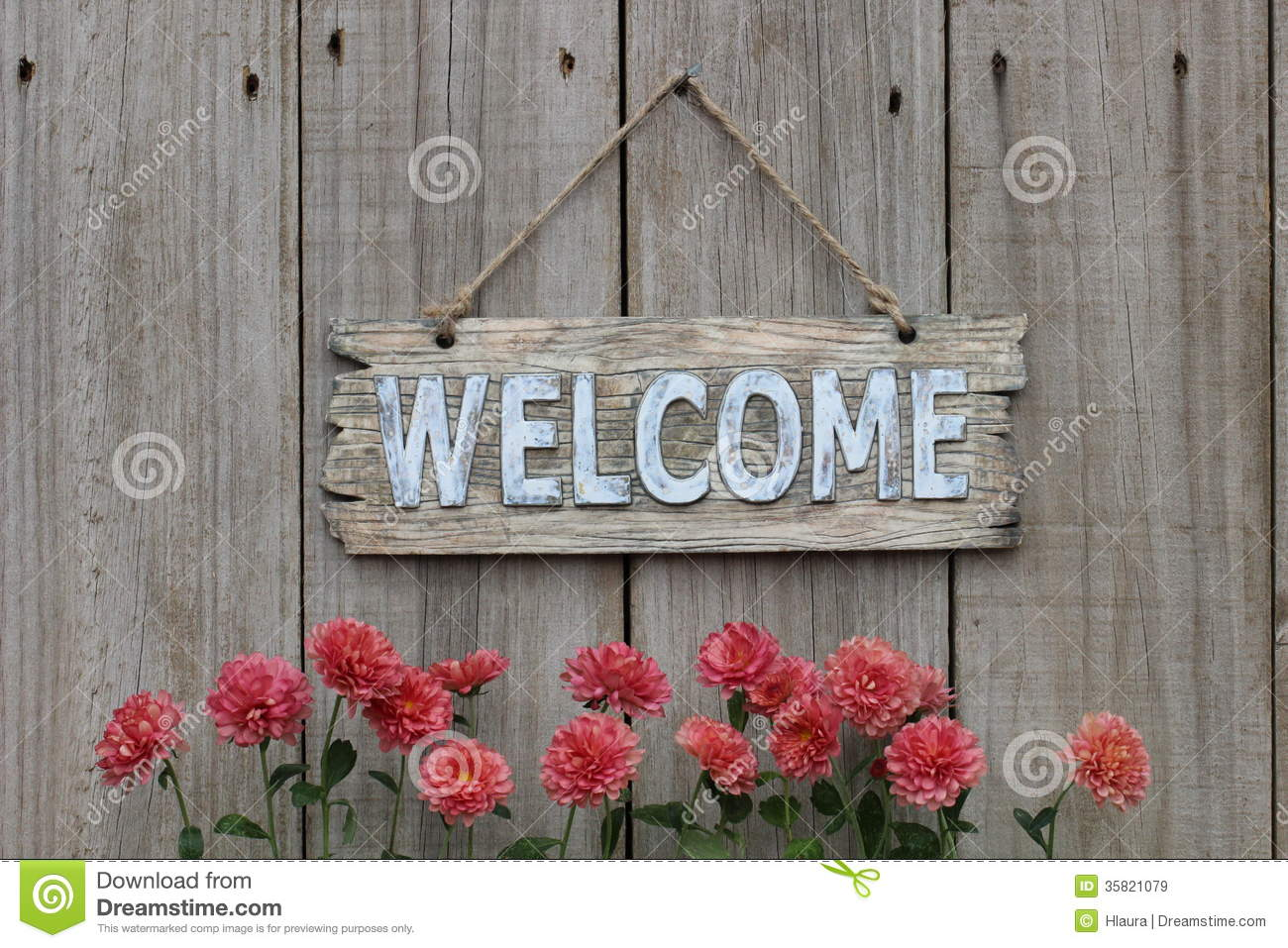 Wood Welcome Sign With Mum Border On Wood Fence Royalty