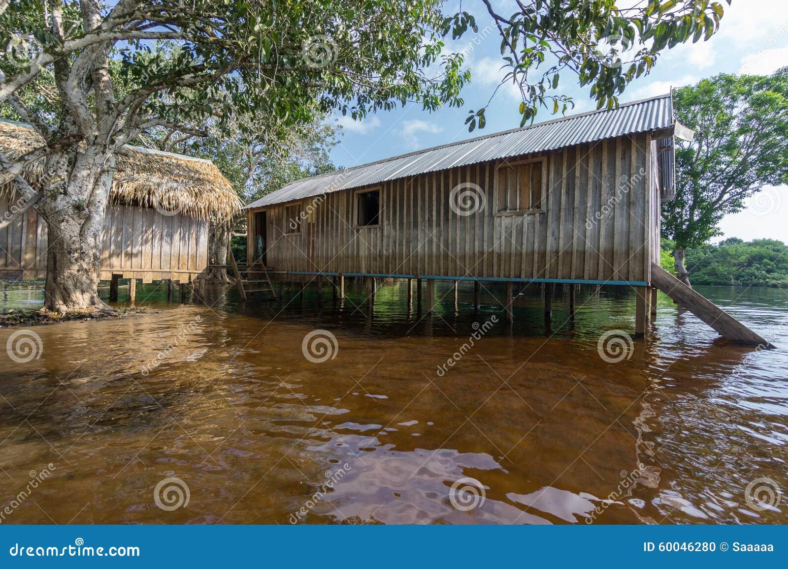 Woode Domy Budowali Na Wysokich Stilts Nad Wodą, Amazonka Tropikalny Las Deszczowy Zdjęcie Stock ...