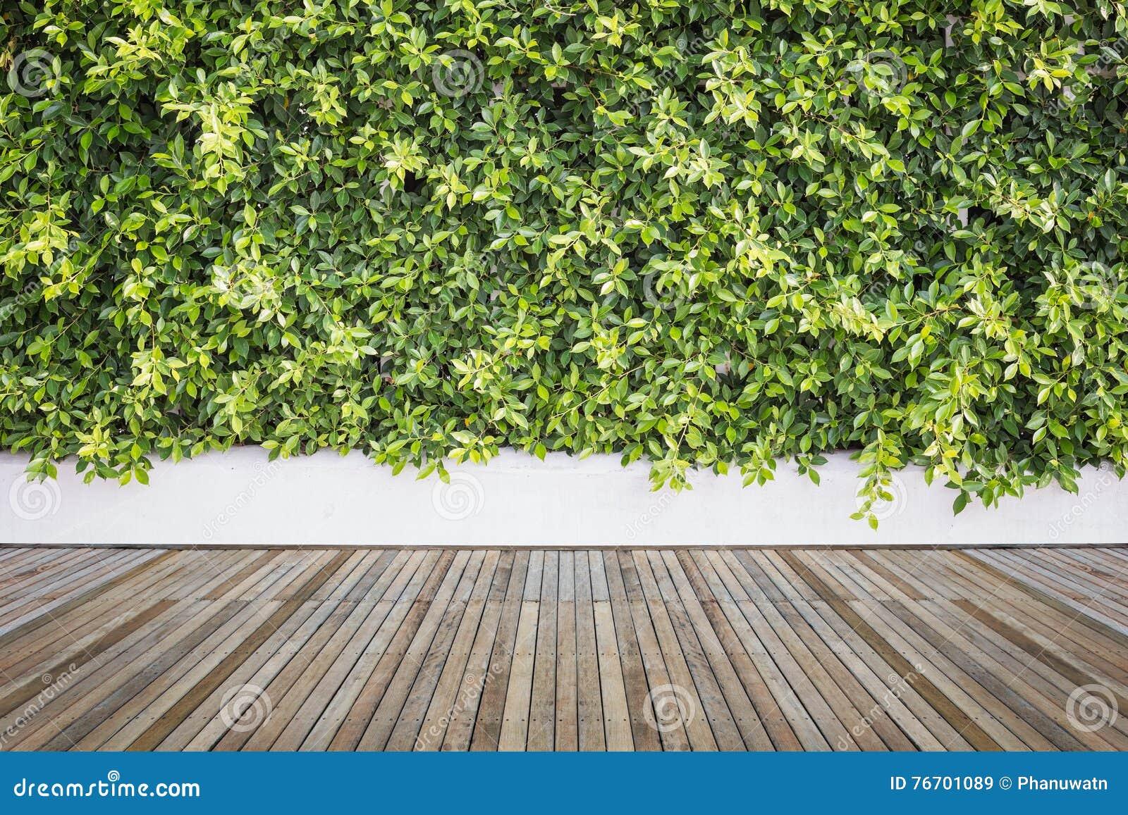 Woodecking Oder Bodenbelag Und Anlage Im Garten Dekorativ Stockbild