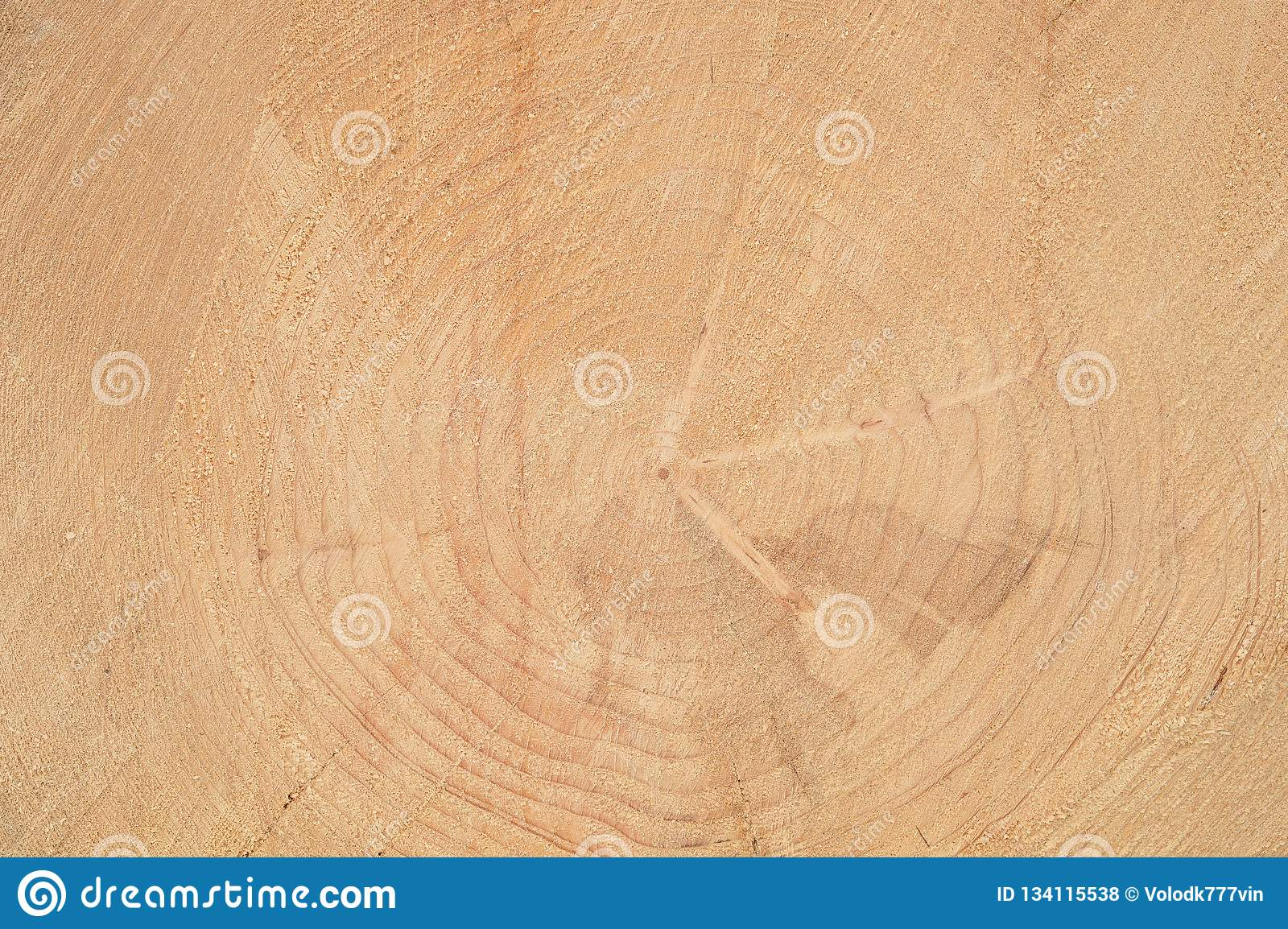 Wooden background. Annual rings on the face of the tree.