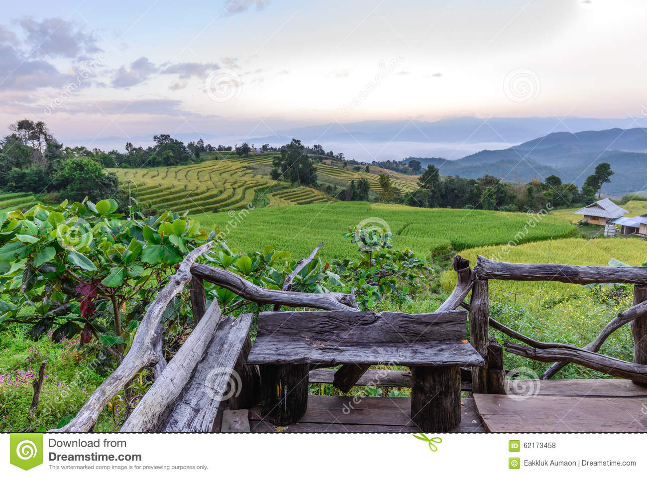 terraced paddy field in countryside  chiang mai  thailand sun rays clip art background sun rays clip art free