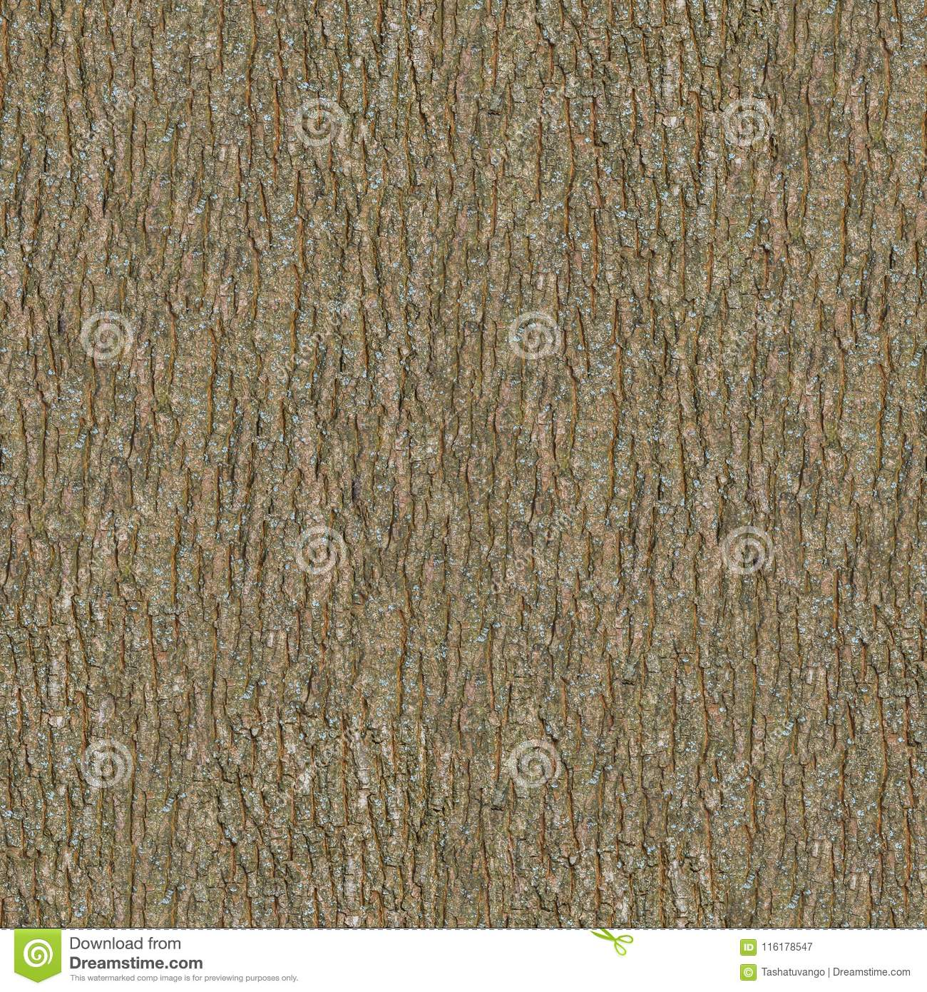 wooden bark seamless tileable texture stock image image of
