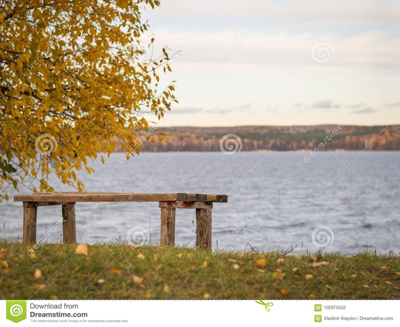 Wooden Bench In Autumn Park On The Shore Of The Lake Stock
