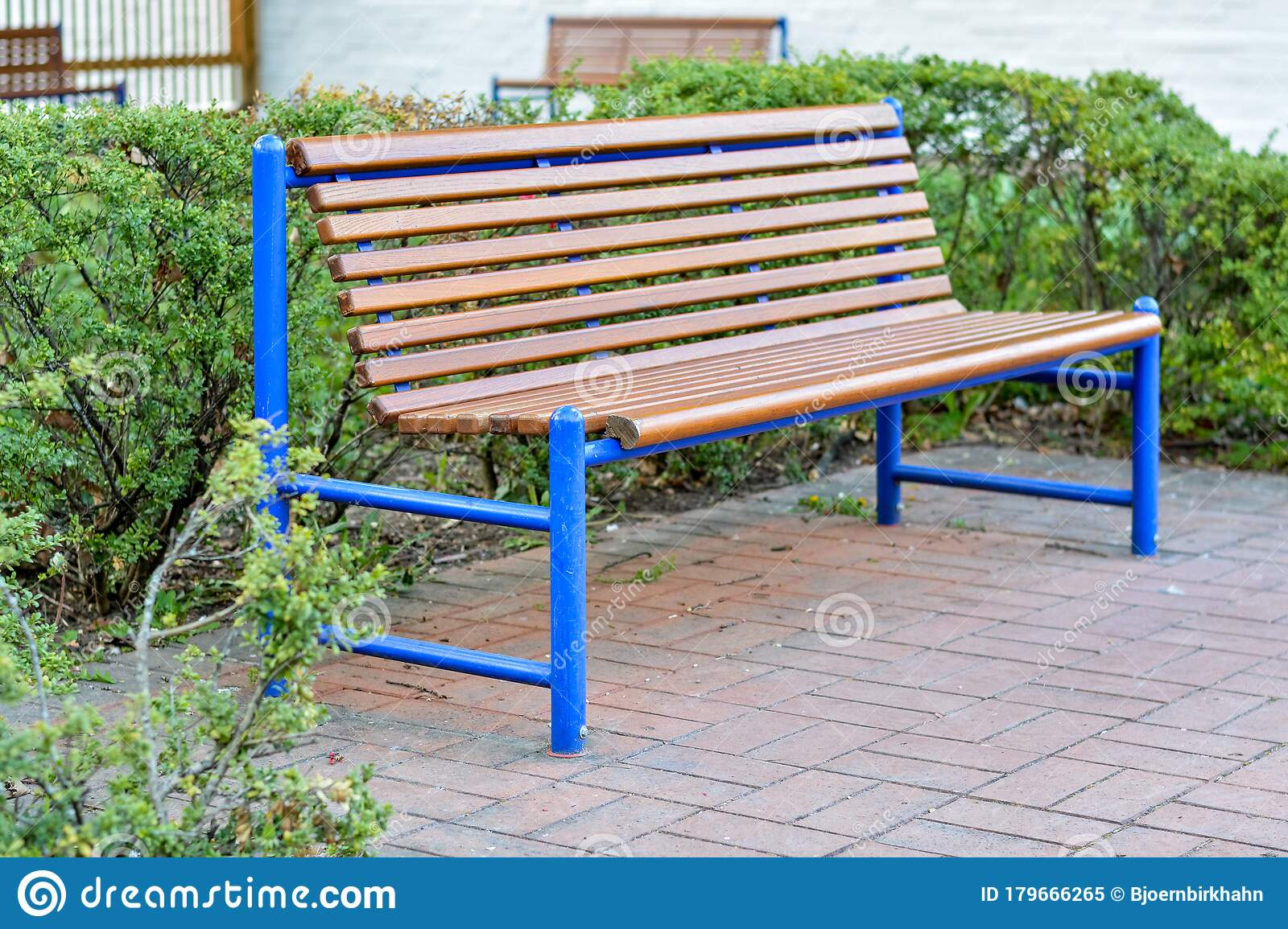 Picture of: Wooden Bench With Blue Metal Frame In A Park Stock Image Image Of Wood Lush 179666265