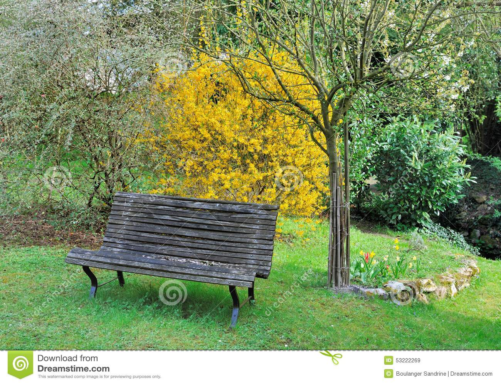 Wooden Bench In Garden Stock Photo - Image: 53222269