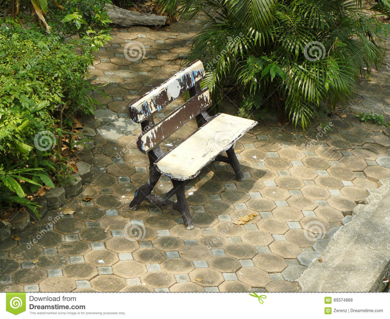 Incredible Wooden Bench Lonely At The Public Park Stock Photo Image Bralicious Painted Fabric Chair Ideas Braliciousco
