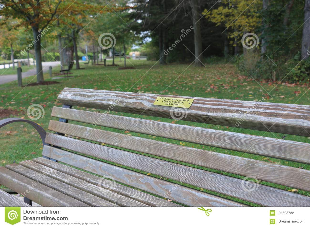 Wooden Bench Editorial Photography Image Of Canada 101505732