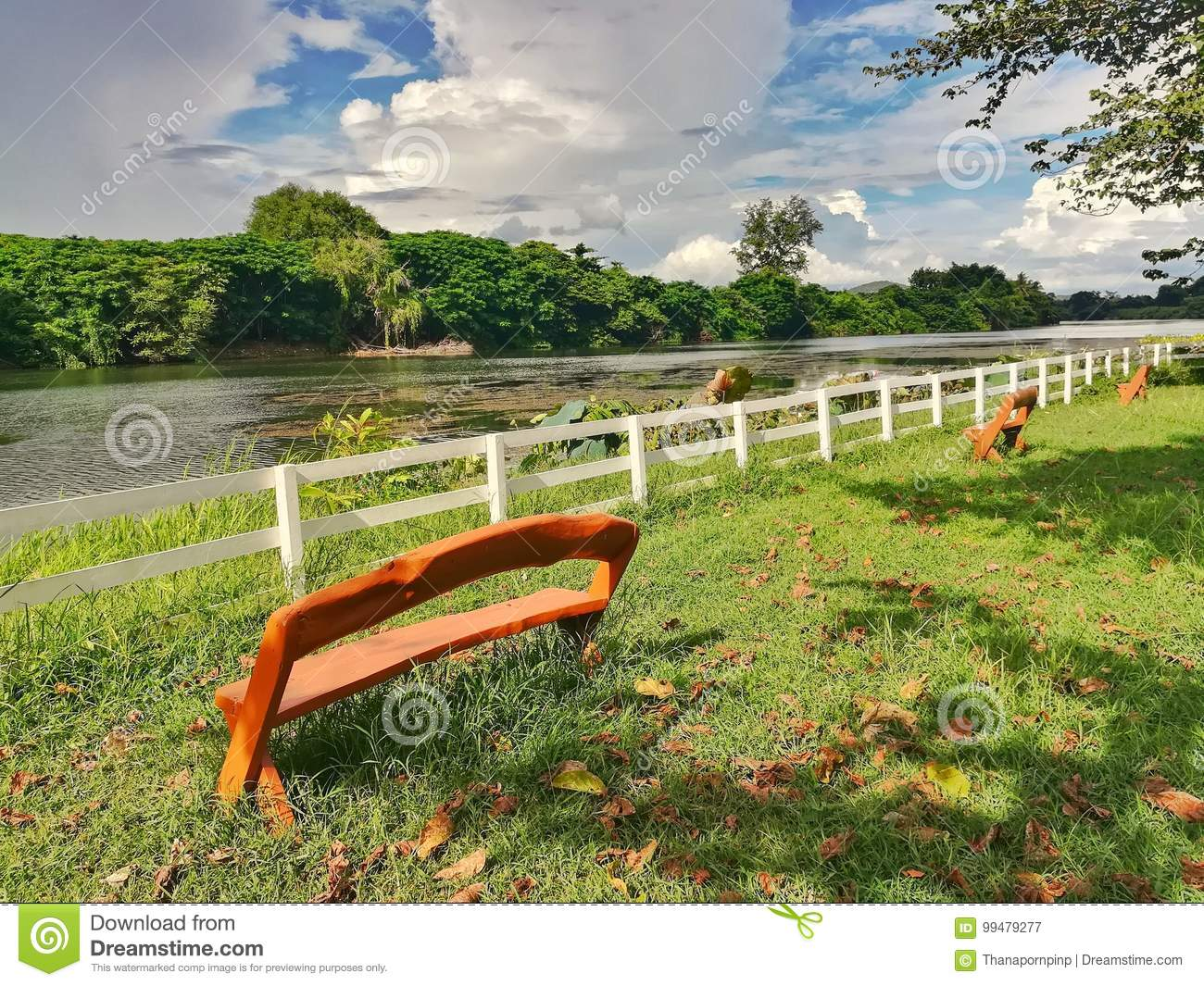 Magnificent Wooden Bench In Public Park Near The River Stock Image Gmtry Best Dining Table And Chair Ideas Images Gmtryco