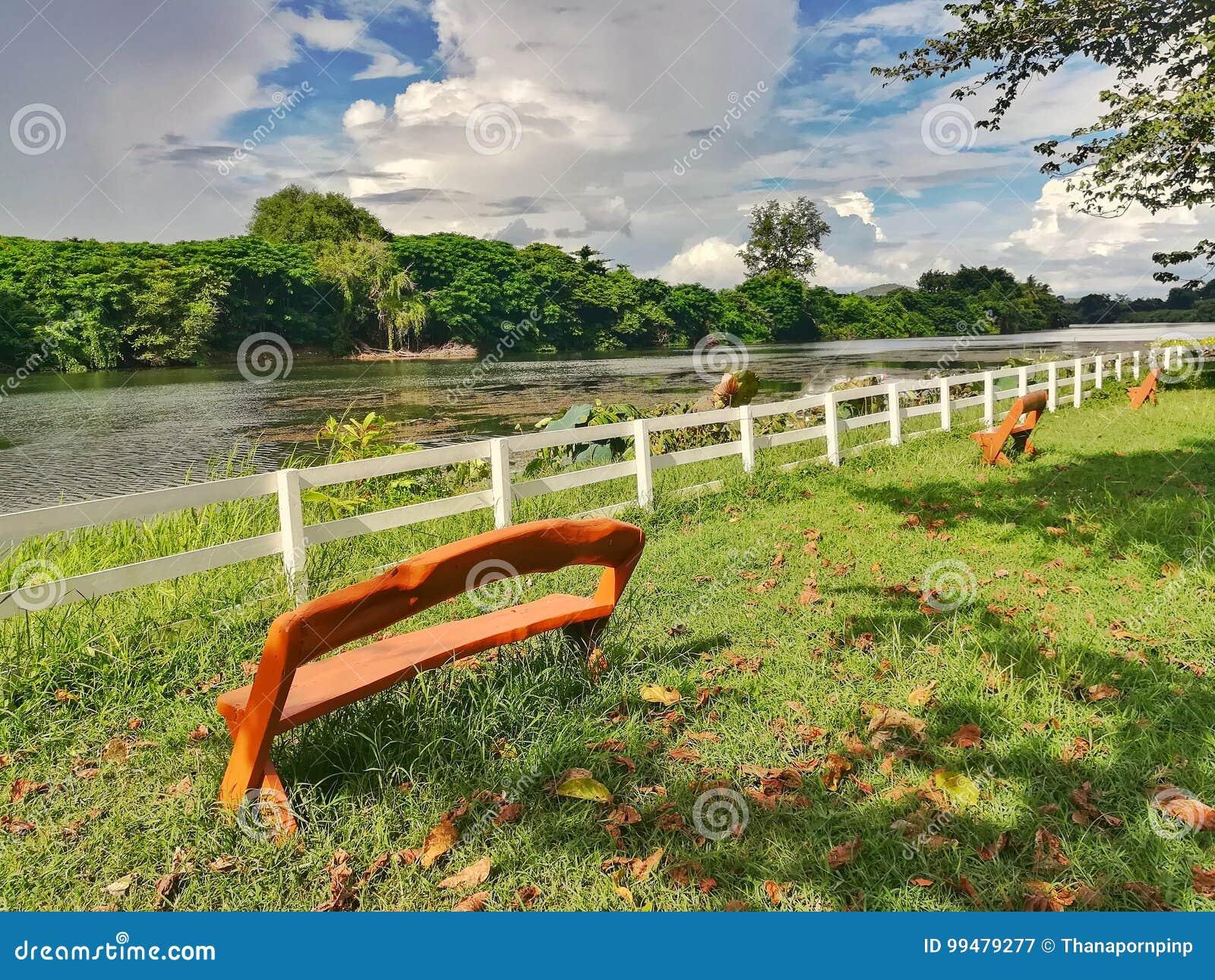 Super Wooden Bench In Public Park Near The River Stock Image Uwap Interior Chair Design Uwaporg