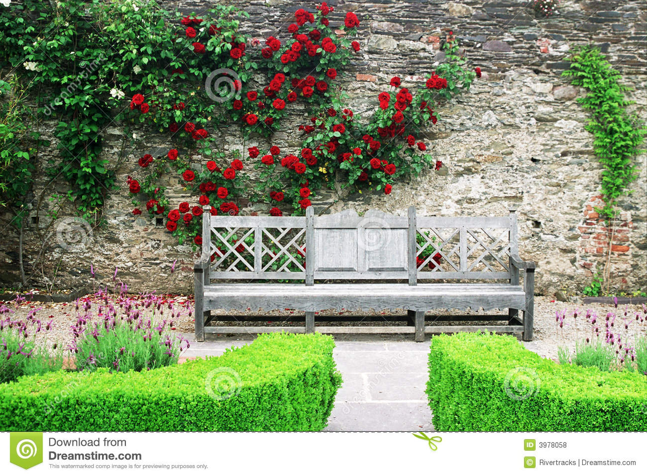 banco de jardim vetor:Wooden bench in the rose gardens of Lismore castle with bright flowers