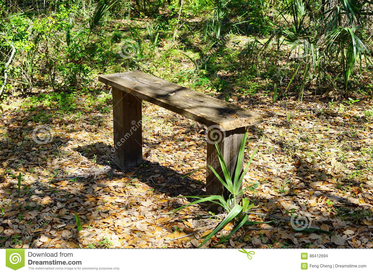 Shaded Bench On A Beautiful Beach Royalty Free Stock Image