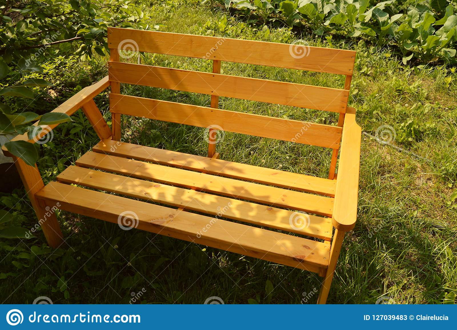 Wooden Bench In Summer Garden For Patio Design, Natural ...