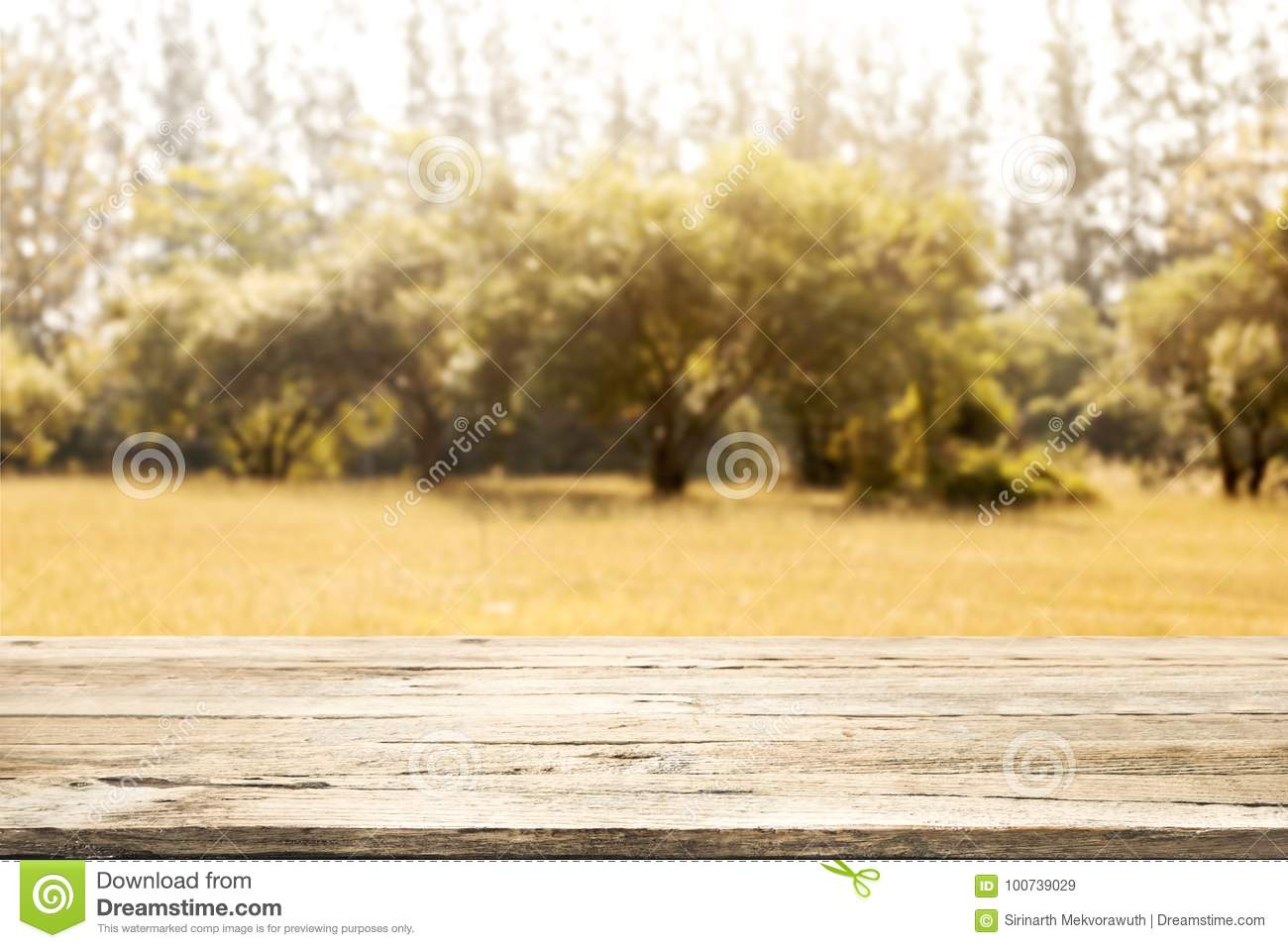 Empty Wooden Table For Present Product. Autumn Season. Stock Image ...