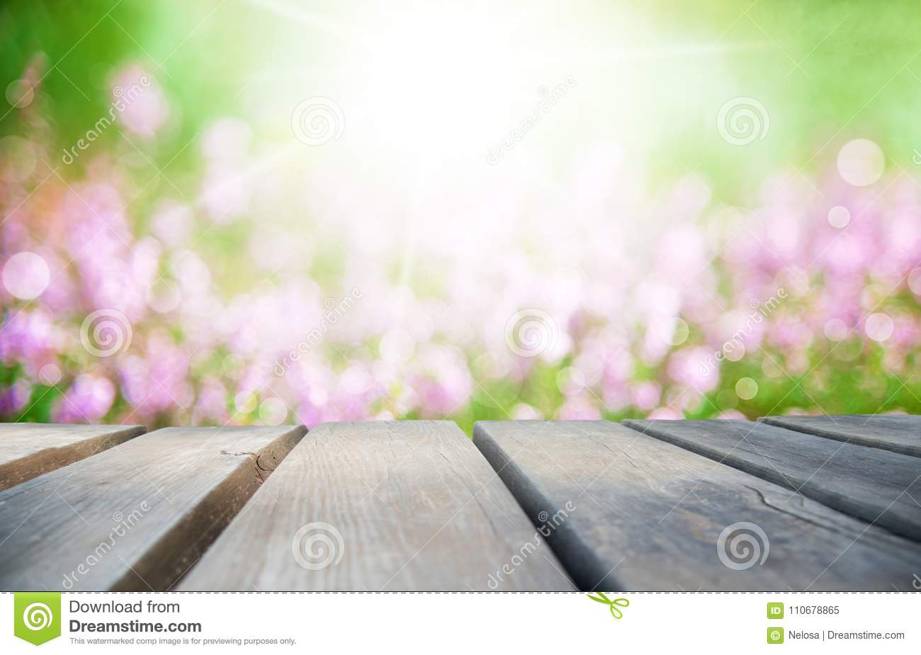 Wooden Board With Sunny Erica Flower Field As Background