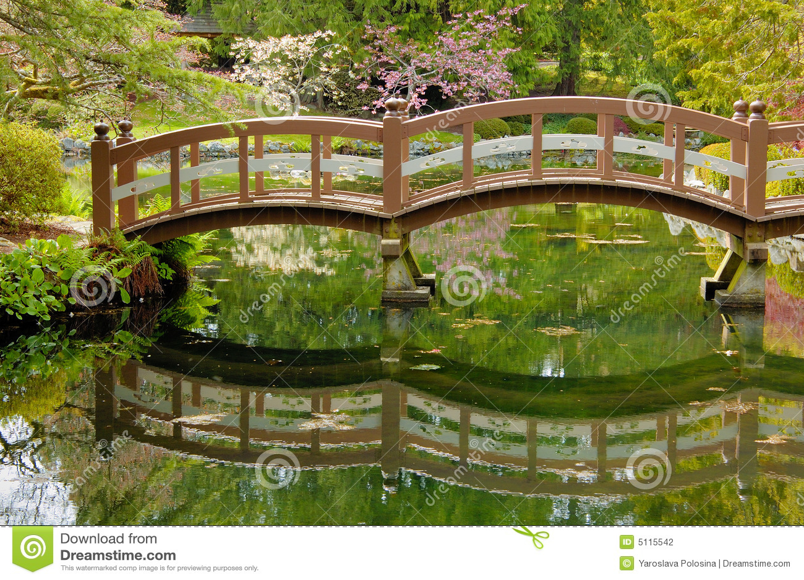 Wooden bridge in japanese garden stock photo image 5115542 for Japanese garden pond bridge