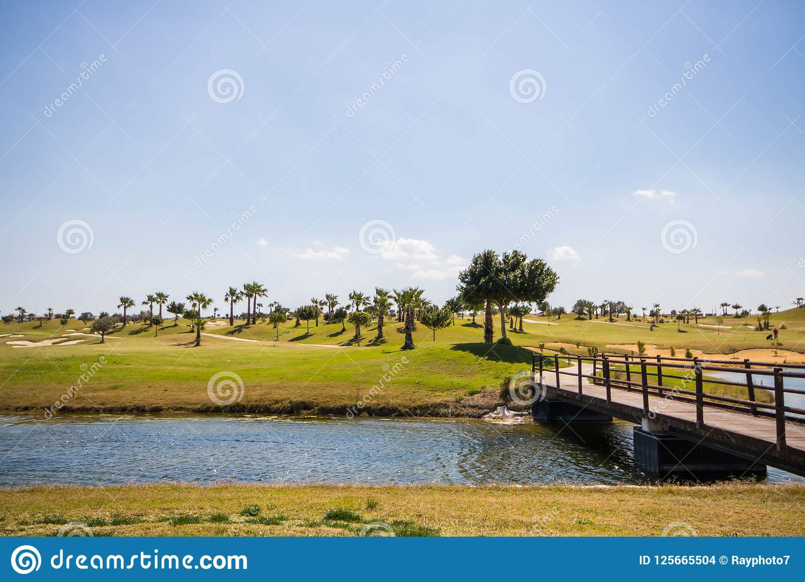 Wooden bridge over the lake in a golf course on a summer day with clear blue sky
