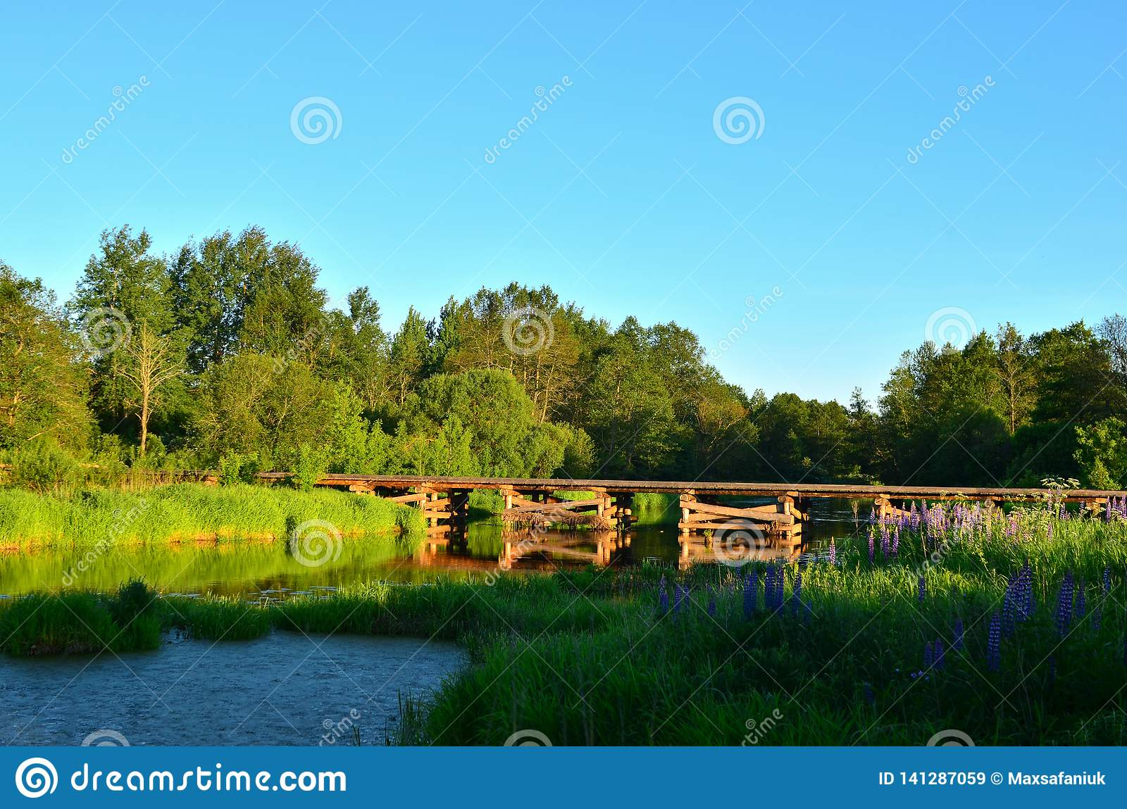A wooden bridge of tree logs lies across a small river inside a wooded area among green nature