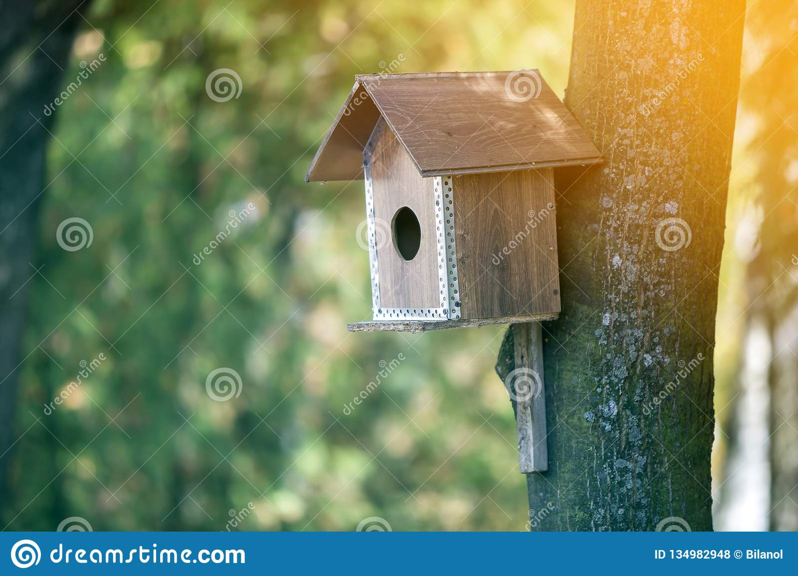 Wooden brown new bird house or nesting box attached to tree trunk in summer park or forest on blurred sunny green foliage bokeh