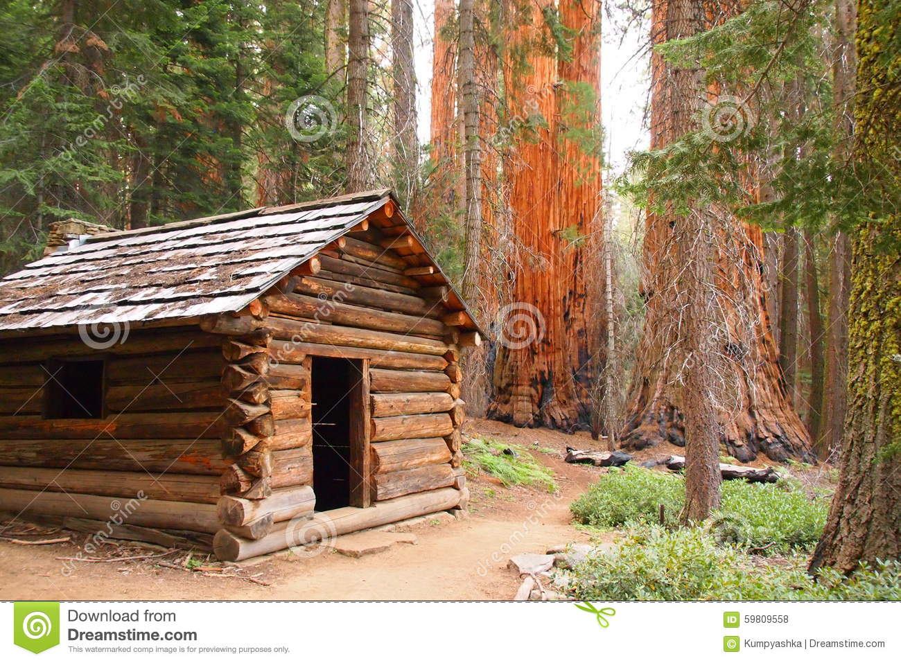 bed national area s park from beautiful views luxury crystal deal property to cabin the newly image yards ha home and built in sequoia beach conservation close cabins
