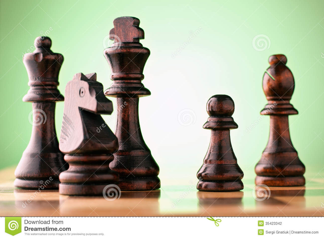 Download Wooden Chess Pieces On A Chessboard Stock Photo - Image of competition, success: 35423342