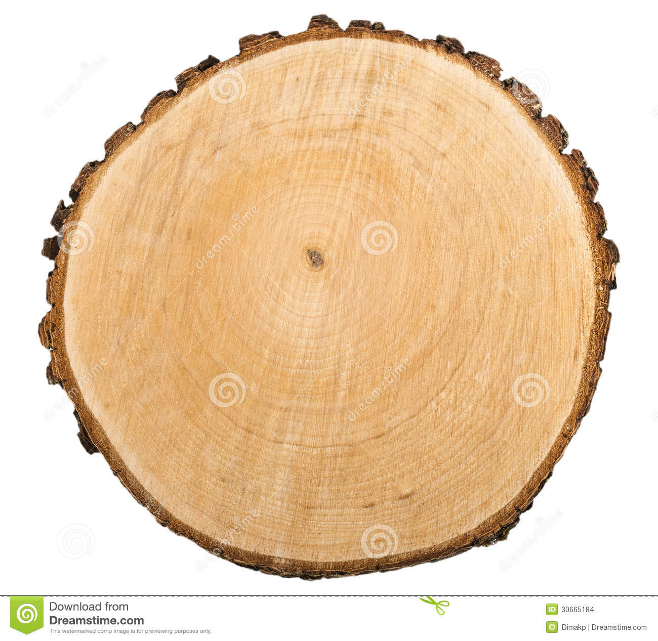 Wooden Cut Texture Stock Images Image 30665184