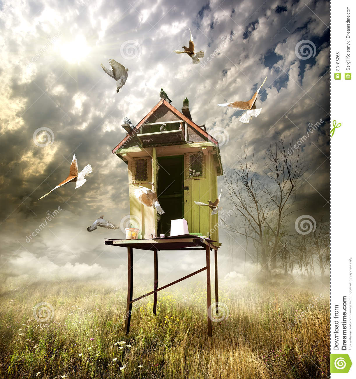Wooden Dovecote Stock Image Image Of Home Flying Nature