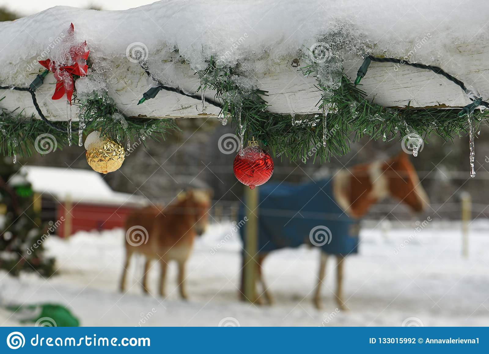 A Wooden Fence On A Farm Decorated With New Year S Christmas Toys And Garlands And Horses Stock Photo Image Of Tree Cold 133015992