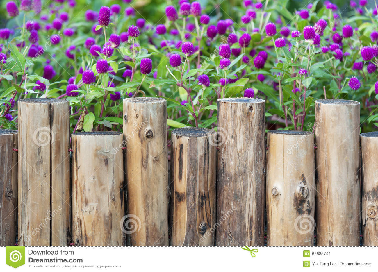 Wooden fence in garden stock image image of color gate - Cercas para jardin ...
