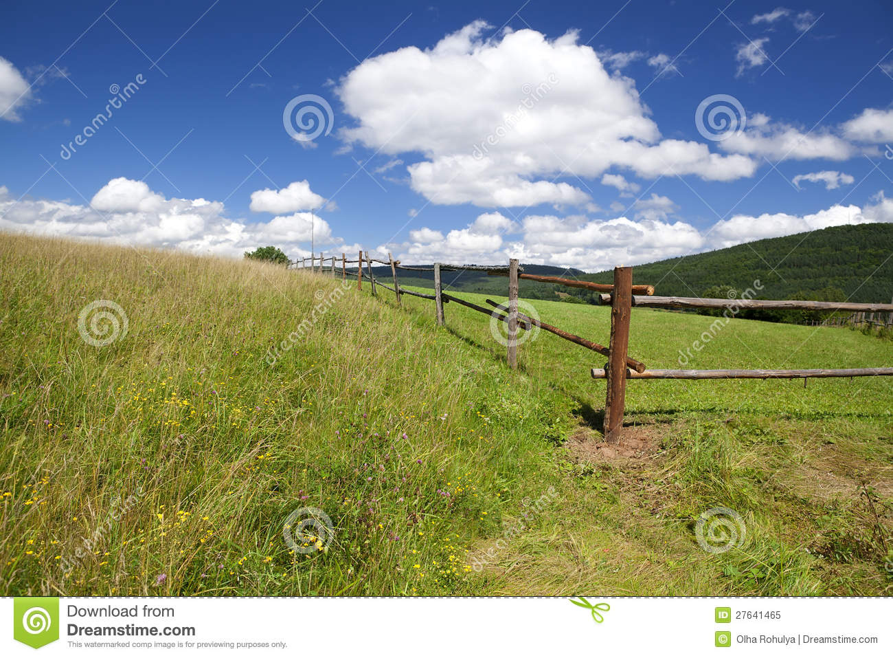 Wooden fence on green summer pastoral royalty free stock photo image 27641465 - Rustic wood fences a pastoral atmosphere ...