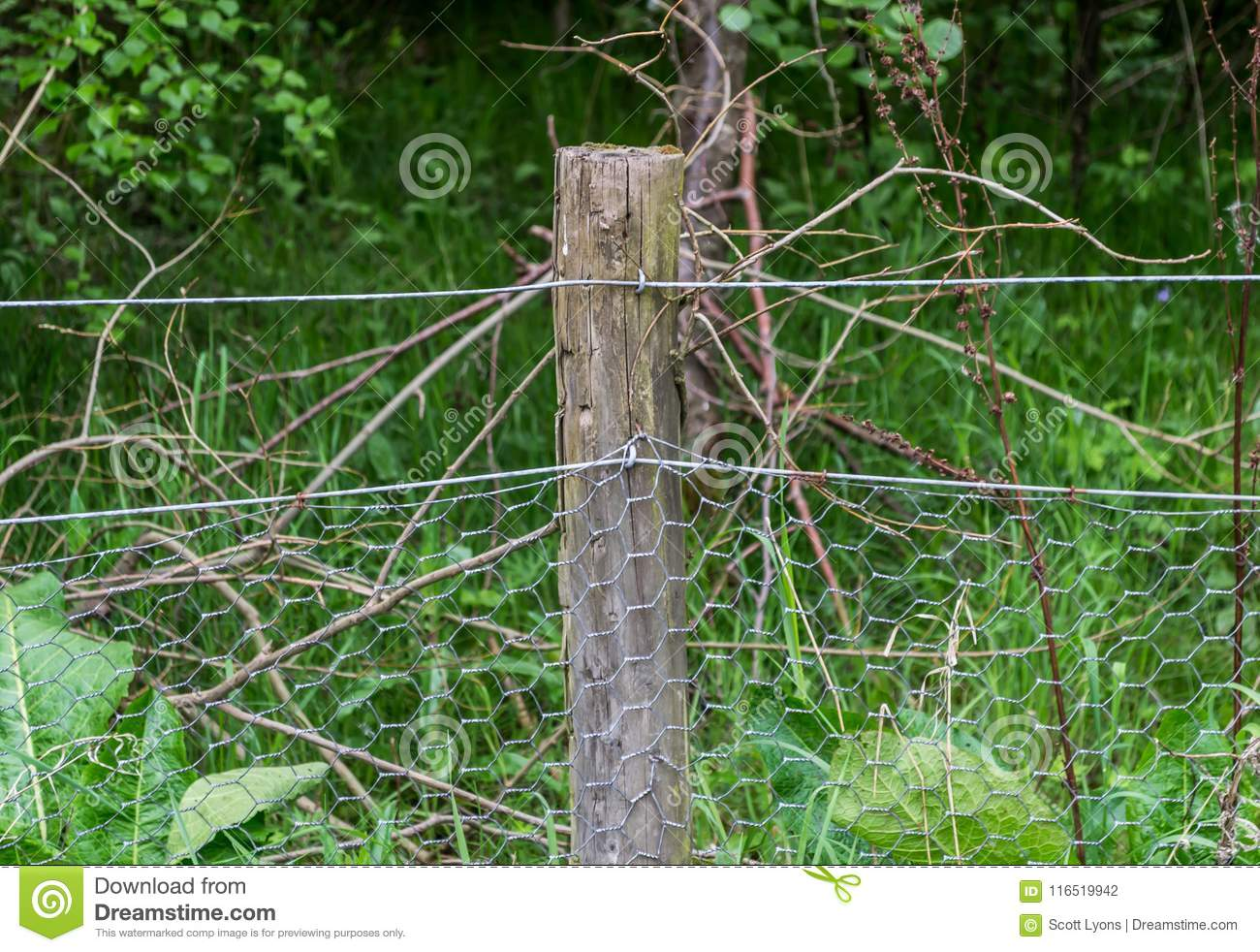 Fence Post With Chicken Wire Stock Photo - Image of field, mesh ...