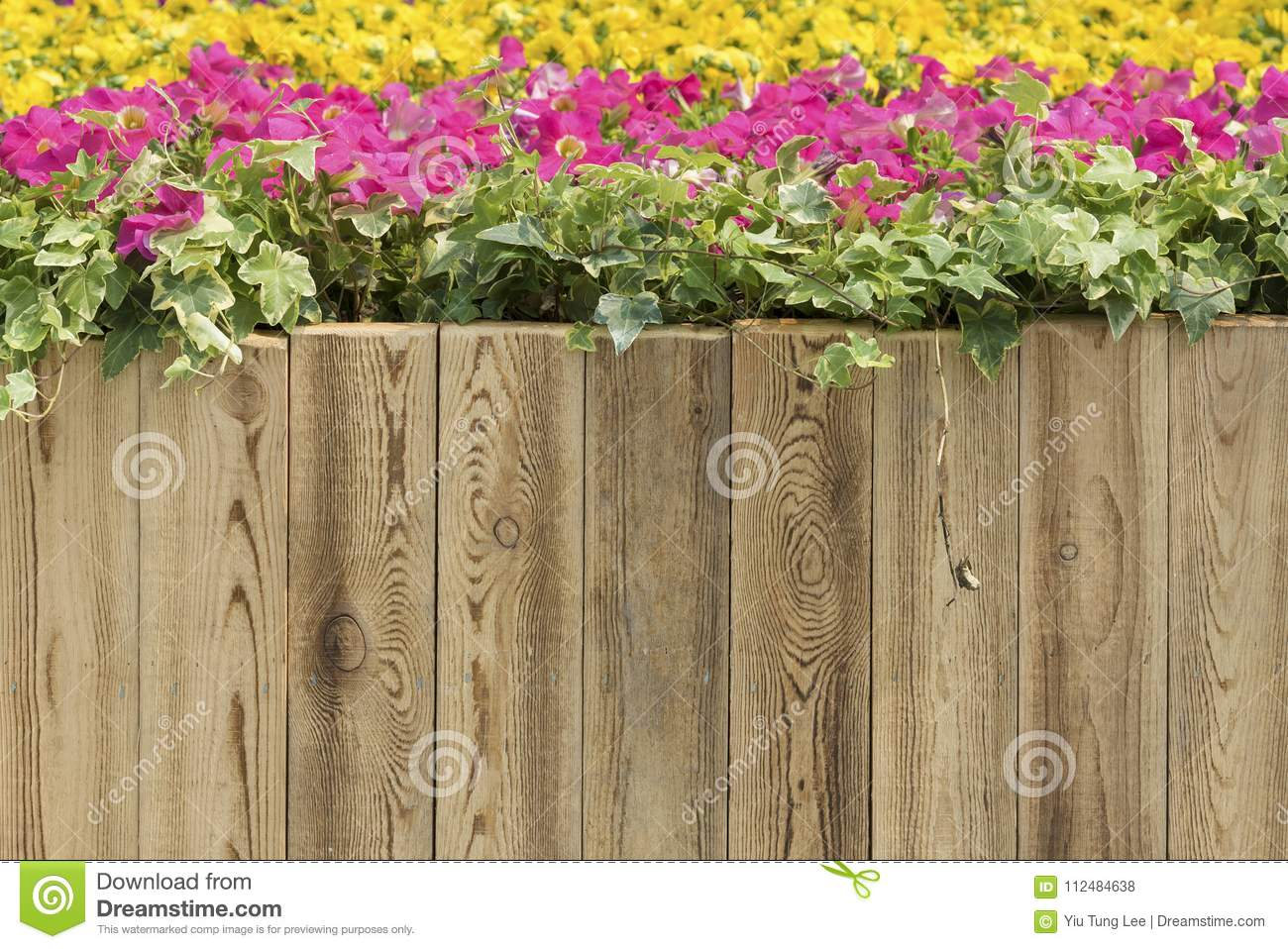 Wooden fence stock photo. Image of border, gardening - 112484638