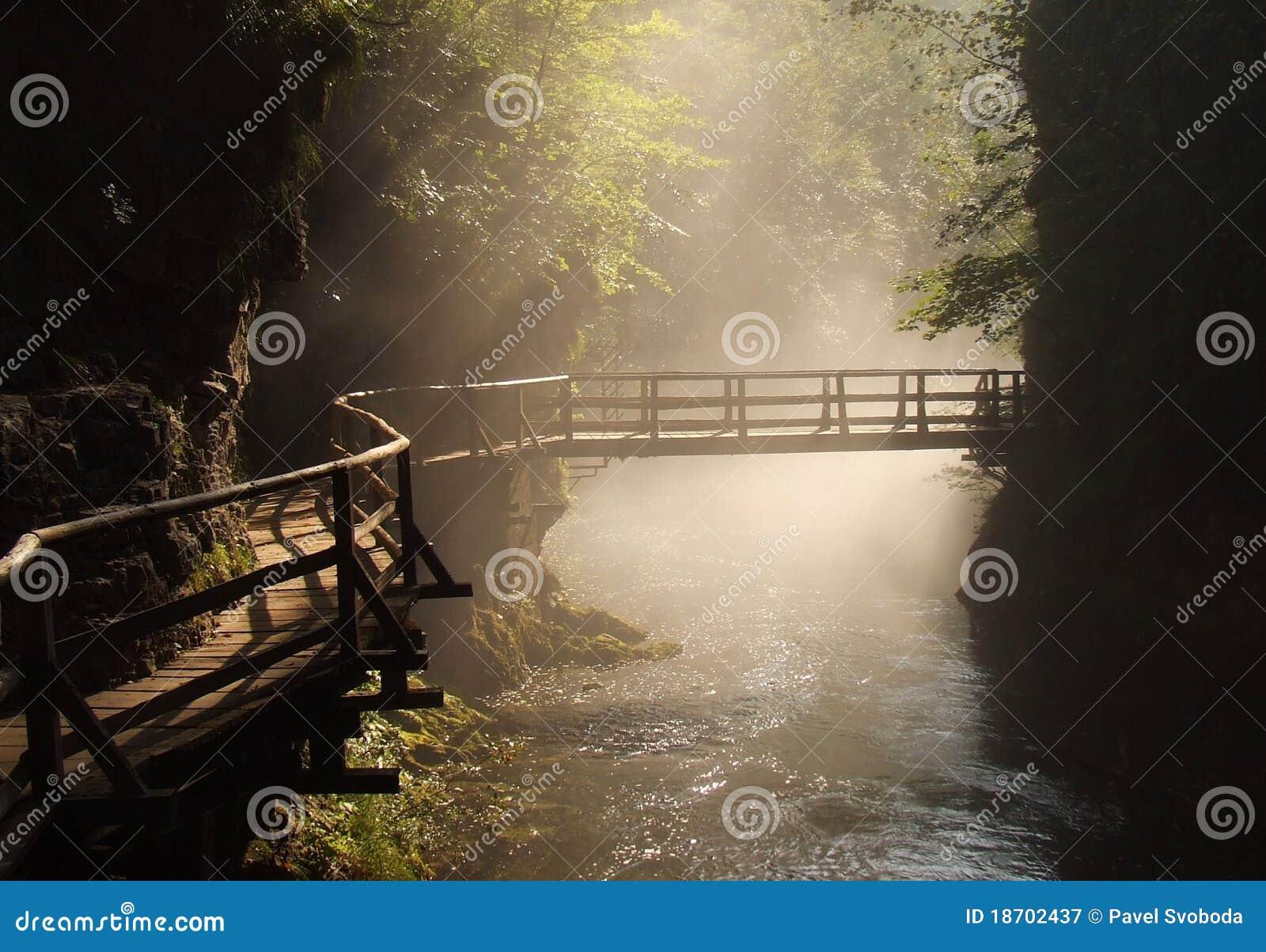 Wooden foot bridge in misty morning