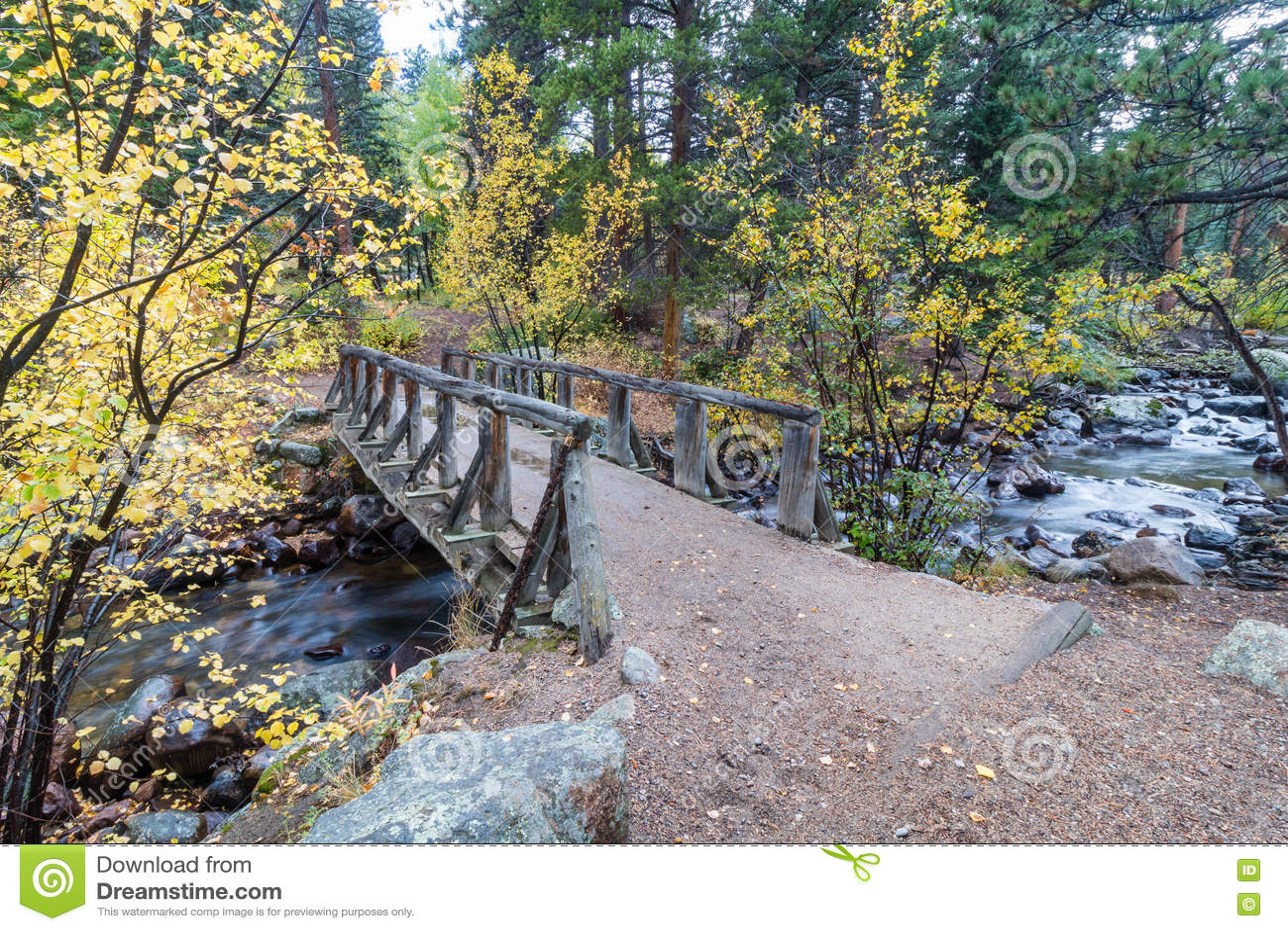 Wooden Foot Bridge Over the Stream