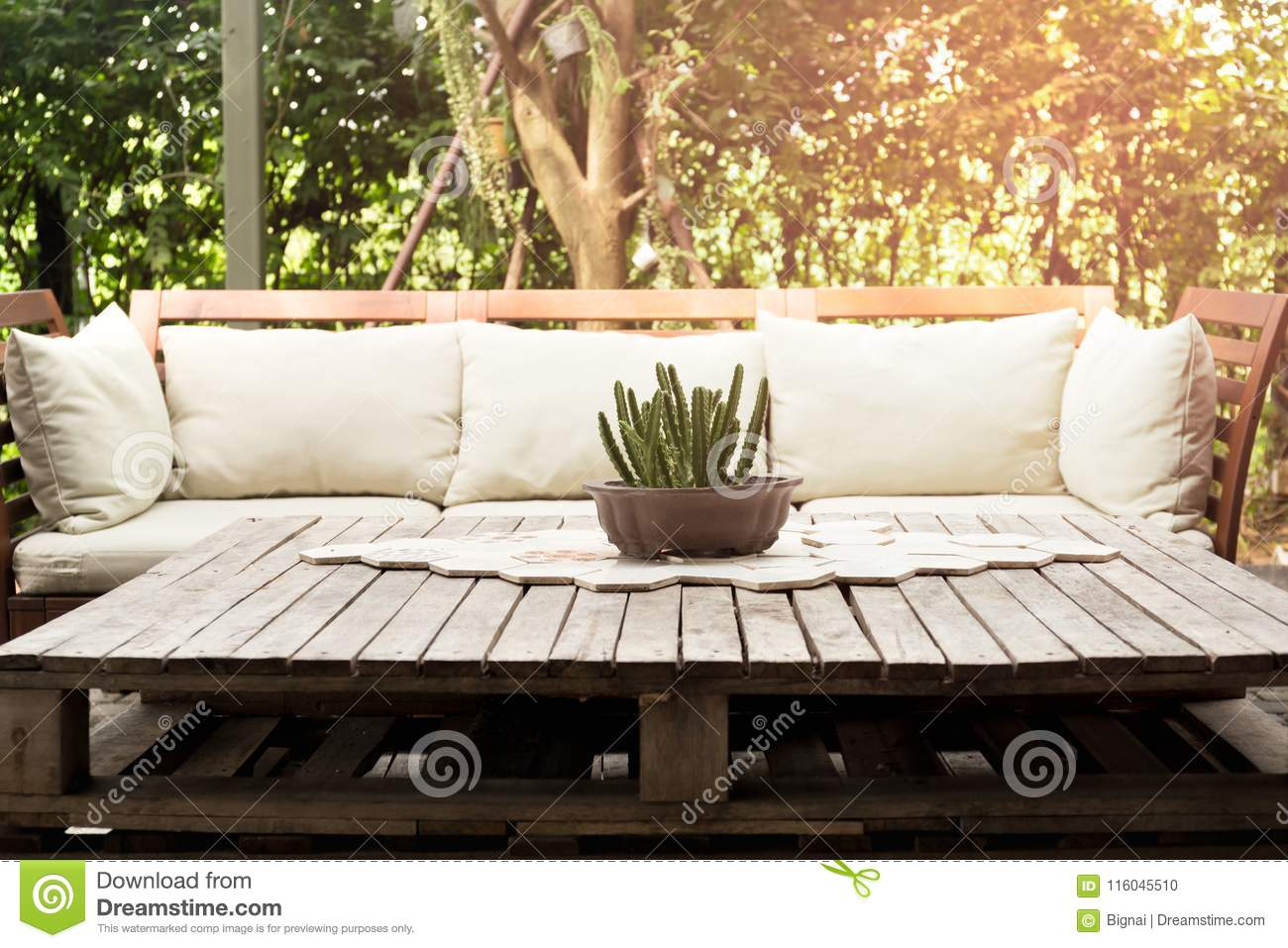 Wooden Garden Lounge Chair With Cushion And Small Cactus On The