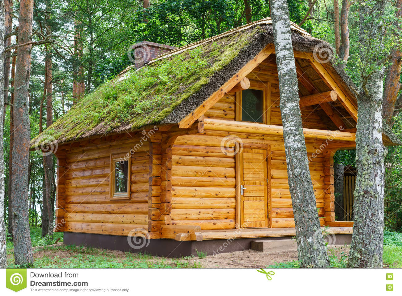 Wooden log cabine shelter under thatched roof in pine forest